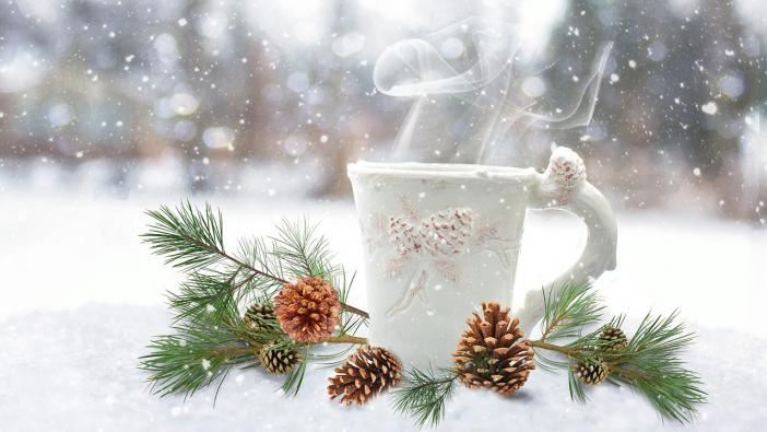 Aranyosi Ervin: A kis fenyő karácsonya