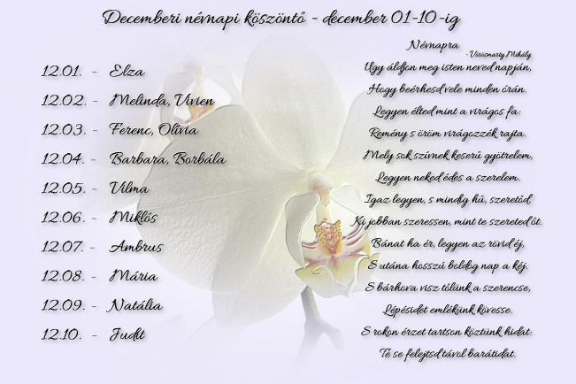 Áldott névnapot kívánok Neked! - december 01-10.