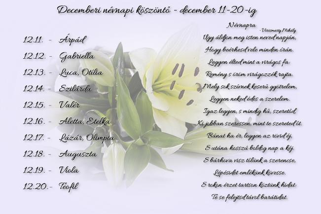 Áldott névnapot kívánok Neked! - december 11-20.