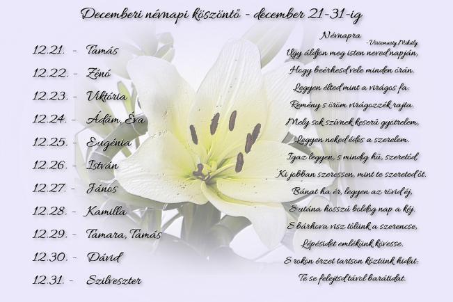 Áldott névnapot kívánok Neked! - december 21-31. -