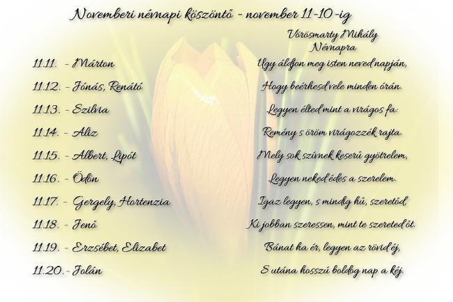 Áldott névnapot kívánok Neked! - november 11-20.