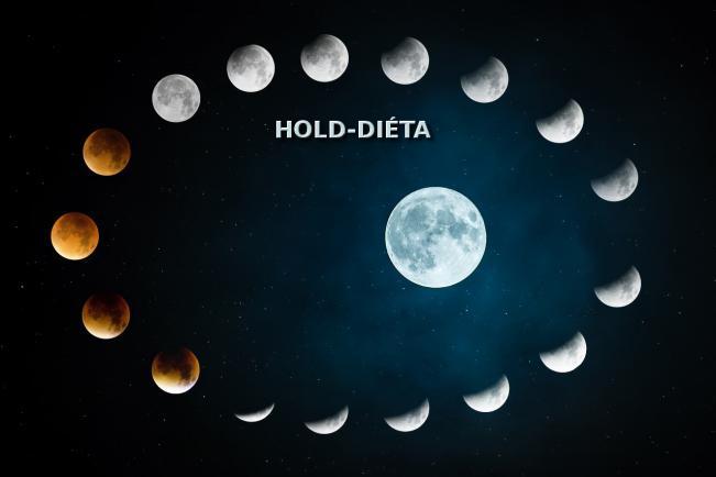 Hold-diéta