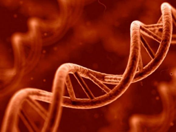 Miképp okozhatnak gondolataink a génekben molekuláris változást